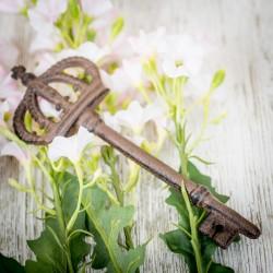 """Декоративный ключ """"Корона"""", 6х1х18см, металл"""