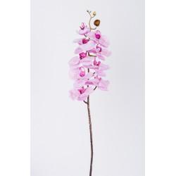 Орхидея, Н77см