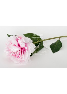 217920,52 Пион розовый Н68см