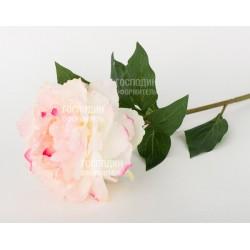 217920,54 Пион, кремово-розовый Н68см